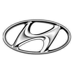 Perdelute auto dedicate hyundai