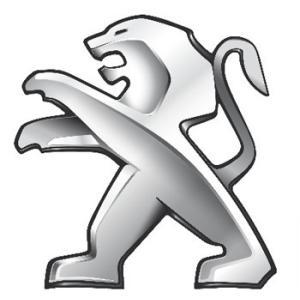 Perdelute dedicate Peugeot