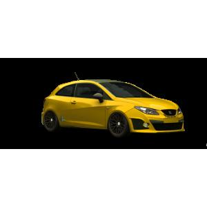 Navigatie Seat Cupra