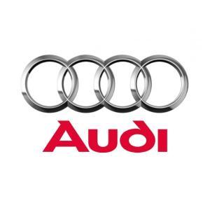 Huse pentru protectie cheie Audi