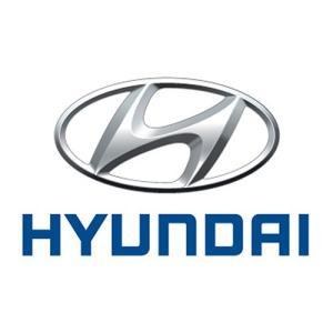 Huse pentru protectie cheie hyundai