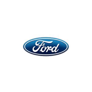 Cauti navigatie dedicata pentru Ford tip Tesla? Trebuie sa vezi!
