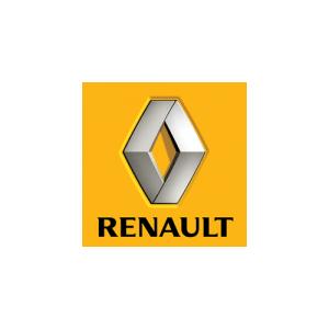 Oferta navigatie dedicata tip tesla pentru marca Ranault.