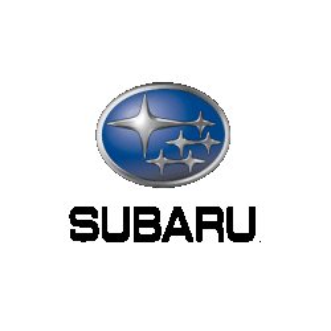 Navigatie tip tesla pentru Subaru