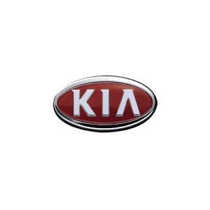 Navigatie tip tesla pentru Kia Sportage.