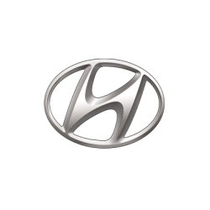 Cea mai variatao ferta de navigatii dedicate tip Tesla pentru marca Hyundai