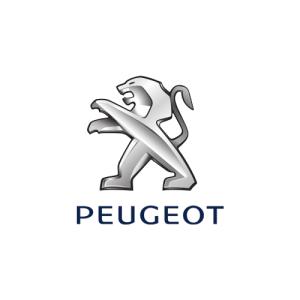 Navigatie Dedicata Peugeot