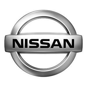 Camera dedicata Nissan
